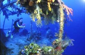 Scuba Diving Santo Vanuatu